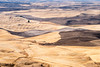 Palouse, Washington (Sunny Herzinger) Tags: palouse autumn fujixpro2 washington travel xf56mm landscape field america fall usa moscow unitedstates us