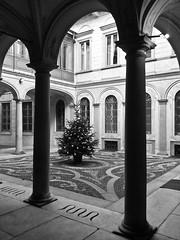 Milano, Palazzo Morando (Rutamatt) Tags: milano architettura palazzomorando milan italy architetture bw blackandwite urban urbex cityscape colonne colonnato chiostro colonnade
