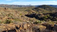 20161210_094253 (Ryan/PHX) Tags: trailrunning bct blackcanyontrail arizona desert outdoors ultrarunning aravaiparunning
