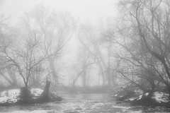 Beyond the Falls (giantmike) Tags: mist nature snow wi water winter creek fog river stream trees