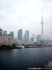 Skyline in the Fog (djhsilver) Tags: toronto gta gotrain go train air travel flying clouds harbourfront