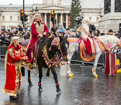 170101 0542 (steeljam) Tags: steeljam nikon d800 london new year parade lights camera action lawrence arabia horse