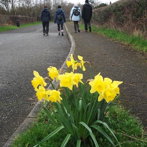 Walking in Wales