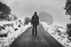 Enfrentarse a tu propio infierno (Mishifuelgato) Tags: enfrentarse infierno propio nikon d90 50mm 18 alicante nieve benifallim carretera snow torre manzanas niebla mist wind invierno frio cold ropa abrigo arboles