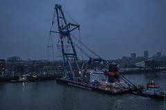 Het 'val' van de Koningshavenbrug bijnaam: 'De Hef'- Rotterdam (Frans Berkelaar) Tags: rotterdam zuidholland nederland nl olympusm1240mmf28 bonmees hebo matador3 koningshavenbrug val koningshaven dehef noordereiland prinshendrikkade