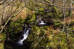Forest Waterfalls (Brian Travelling) Tags: trossachs loch lubnaig voil water sky waterfall pentaxkr pentax scotland scenery landscape