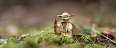 The New Yoda (Reiterlied) Tags: 18 35mm d500 dslr finland forest lego legography lens minifig minifigure moss nikon photography prime reiterlied starwars stuckinplastic toy wood yoda