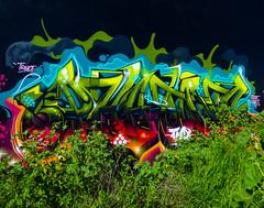 Urban Camouflage (Steve Taylor (Photography)) Tags: truce freak saves wongi weeds art graffiti tag streetart mural colourful newzealand nz southisland canterbury christchurch plant tmp camouflage urban