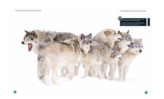 World of animals magazine # 39
