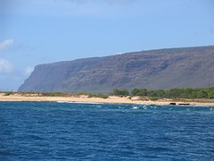 IMG_2394 (Dan F.) Tags: hawaii napalicoast bluedolphin kauai