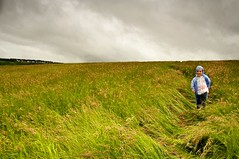 Running through the long grass on a wet day... (Ray Byrne) Tags: blue green wet field grass rain clouds canon landscape 350d grey north running alnwick northumberland canon350d northeast landscapephotography raybyrne shilbottle byrneout