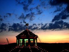I needed tonight (ivoryelephantphotography) Tags: blue light sunset red sky horse black yellow night lights dusk icon fcsetsrises