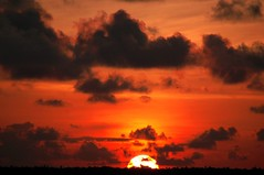 Gimme Red ---     Sunsets at Kumarakom 3 (Anoop Negi) Tags: travel blue girls sunset red portrait sky people cloud india lake color men green bird tourism monument nature water girl beautiful yellow promotion festival clouds sunrise river landscape boat photo amazing women essay moody faces image photos gorgeous indian picture culture landmarks traditions places kerala images location best exotic human photograph hues journey land historical moods anoop gree backwaters boatman oars alleppey negi waterscape kottayam uplifting kumarakom alappuzha kereala photosof ezee123 httpezee123livejournalcom rippleslakeresort imagesof