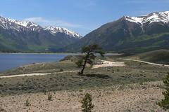 mountain lake tree rv