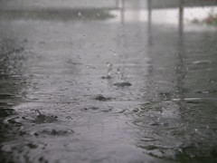 For the children - everywhere (Lynne Hand) Tags: storm rain weather hail stone lovepeace hailstone heavyrain