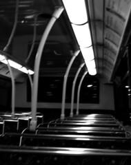 Night Scene: Alone InThe Bus (Sylvain Sylvain) Tags: ireland dublin white black blanco branco night canon 350d noir negro scene preto nb weis nuit bianco blanc nero schwarz irlande sylvainsylvain europebw 黑白色 sylvainclep 백색 m3l0dym4k3r m3l0dymak3r 黒い白 까만