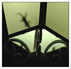 (capitan-patata) Tags: light 15fav luz lamp lampost farol salamandra josemanuelholguin topphotoblog 50club