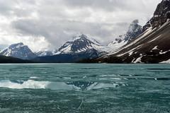 IMG_7703 (rachel_w123) Tags: banffnationalpark icefieldsparkway bowlake canadianrockies