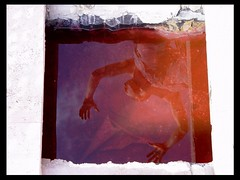 J U A N i n B L O O D____________ (Morgan Fuse) Tags: juan riflessi terni youngphotographers