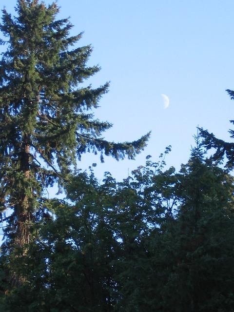 Moon, Frank L. Knight Park
