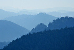 Layers Upon Layers...... (shesnuckinfuts) Tags: blue mountains atmosphere cascades wa washingtonstate cascademountains scenicbyway mtrainiernationalpark saywa experiencewa sunrisevisitorcenter shesnuckinfuts brpblue mathermemorialparkway wa410e