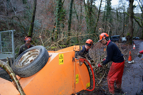 wood-chipping operations at Fingle (3)