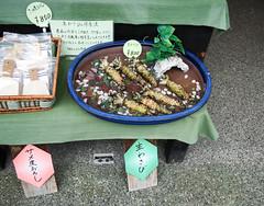 Izu, Japan (josewolff) Tags: green japan store sale roots wasabi izu shizuokaprefecture freshwasabi realwasabi wasabiroots shuzenjistation