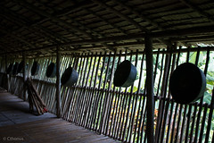 IMG_2458 (Cthonus) Tags: geotagged malaysia borneo longhouse rungus runguslonghouse