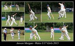 Anwen Morgan Wales U17 Girls (JDPhotography -) Tags: collage cricket johndavies jdphotography picasa3 roseevans ellareed copyrightjohndavies welshcricket nocolereid anwenmorgan georginaparfitt