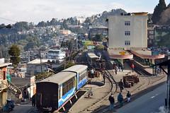 India - West Bengal - Darjeeling Himalayan Railway - Darjeeling Station - 43 (asienman) Tags: india westbengal darjeelinghimalayanrailway asienmanphotography