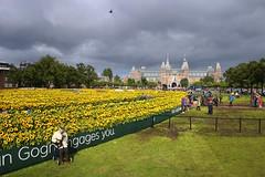 Joop bij het van Gogh zonnebloemen labyrint (0me Joop) Tags: museumplein van gogh zonnebloemen labyrint
