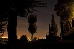 light sea (No Borders Nomad) Tags: park city trees sky italy sun field night contrast sunrise high nikon jesus silouette monastery cypress albero dept d300 cipressi curone montevecchia