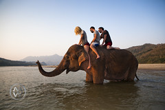 An afternoon spent playing with elephants. (wrightontheroad) Tags: travel people mountain elephant wet horizontal walking fun outdoors photography togetherness sand holding asia southeastasia day sitting friendship adult mr wildlife fulllength happiness adventure journey lookingdown activity cheerful laos sideview youngadult playful vacations enjoyment adultsonly luangprabang clearsky brownhair youngwomen animalsinthewild blondhair youngmen modelrelease midadult luangphabang casualclothing threepeople traveldestinations colorimage twoanimals animalthemes midadultmen 3034years 2529years 2024years