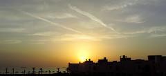Setting Sun (Khaled M. K. HEGAZY) Tags: sunset sea sky orange cloud sun white black tree nature silhouette yellow architecture nikon ship outdoor redsea egypt palm coolpix شمس الغروب سماء بحر سحب سحابة سفينة البحرالأحمر غروبالشمس سفن p520 rassedr راسسدر