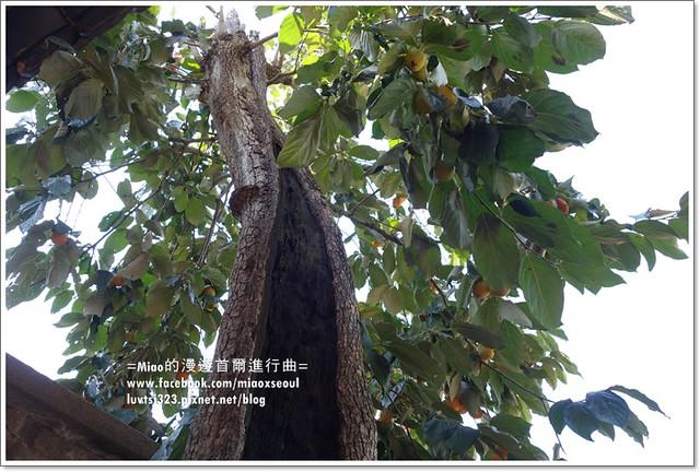 양림동근대역사문화마을65