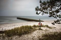 I55A9188-Redigera-3.jpg (michael.nilsson.se) Tags: sterlen saltsjbaden ystad sandskogen lngaslutartider