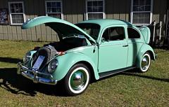 VW Beetle (Dave* Seven One) Tags: classic vw vintage bug beetle vwbeetle aircooled type1