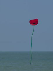 Surréaliste *---- ° (Titole) Tags: sea kite poppy cerfvolant friendlychallenges titole nicolefaton internationaldieppekitefestival festivalinternationaldecerfvolantdedieppe