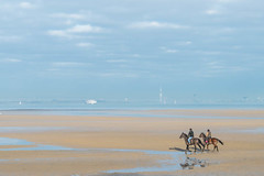 Ryde Sands, Isle of Wight.... (Charles Smallman) Tags: horses holidays isleofwight solent canter horseriding gallop sandybeach ryde appley thesolent nikond800 charlessmallman