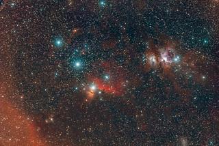Orion Region Widefield