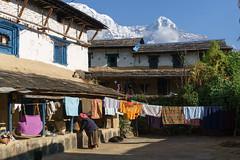 Ghandrung 1940m (Poxxel) Tags: nepal annapurnasouth hiunchuli ghandrung