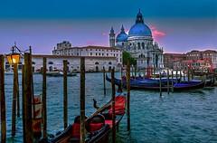 Venetian Blues (Cole Chase Photography) Tags: venice sunset italy canon dusk 5d grandcanal gondolas markiii basilicadisantamariadellasalute