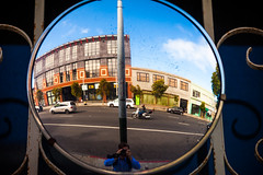Roses Are Free (Thomas Hawk) Tags: california sanfrancisco usa unitedstates unitedstatesofamerica mirror selfportrait fav10