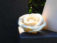 ewige Rose (1elf12) Tags: rose stein stone germany deutschland münster cemetary zentralfriedhof smileonsaturday roseisarose