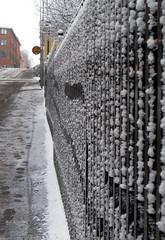 Väntar vid det snöiga staketet / Waiting by the snowy fence (Barbro_Uppsala) Tags: snowy snow winter uppsala uppland sweden stjohannesgatan fs161211 vantan väntan fotosondag fotosöndag waiting staket fence street steps
