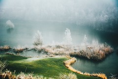i can't see paradise (lina zelonka) Tags: budenheim germany rheinhessen linazelonka rheinlandpfalz rlp rhinelandpalatinate nature lake see golfplatz deutschland europe europa frost winter dezember december nikond7100 18105mm fog nebel foggy