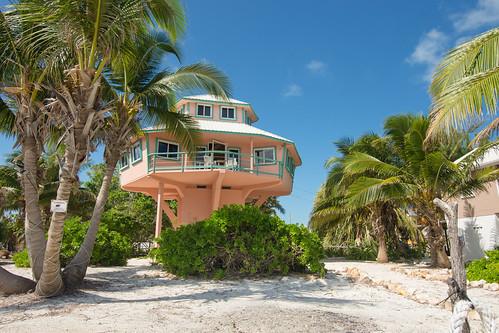 Belizean Treehouse