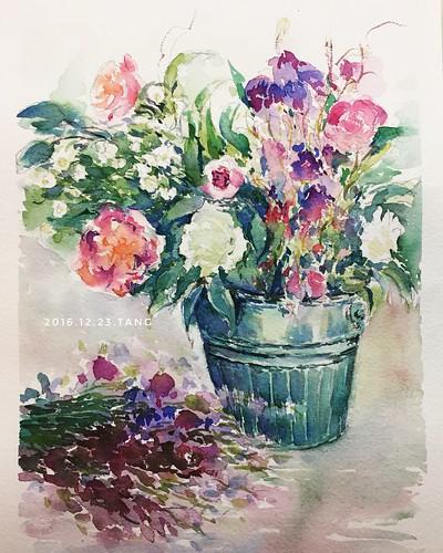 养花不如画花😊