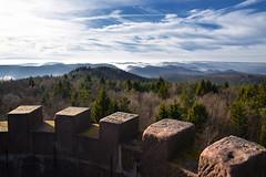 Du haut de la tour du Grand Wintersberg (Excalibur67) Tags: nikon d750 sigma globalvision 24105f4dgoshsma paysage landscape vosgesdunord alsace ciel cloud sky nature nuages brume brouillard