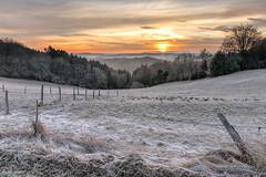 winter is not over yet (Markus Trienke) Tags: halver nordrheinwestfalen deutschland de winter ice cold morning sunrise field fence clouds landscape tree trees forest sauerland misty foggy fog